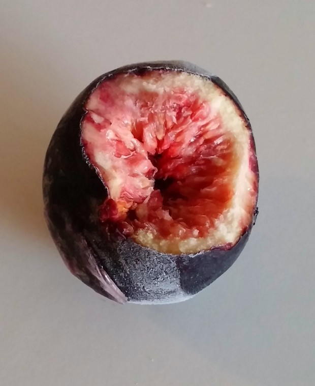 Fresh black fig frozen for a couple of hours. It's so sorbet-like you'll do a double-taste.